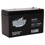 interstate Battery, SLA1075, 12v 8Ah Sealed Lead Acid Battery, T1