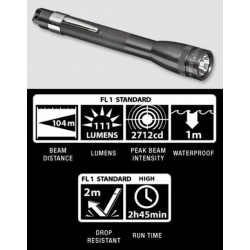 Maglite MiniMag 2 Cell AAA LED Flashlight SP32096, 156-019, GRAY